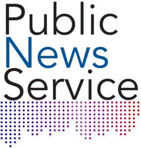 Public_New_Service_Logo